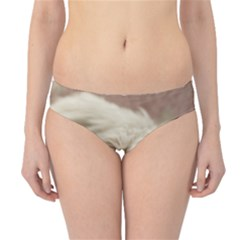 Maltese Sleeping Hipster Bikini Bottoms