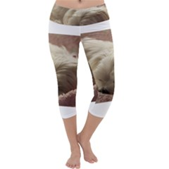 Maltese Sleeping Capri Yoga Leggings