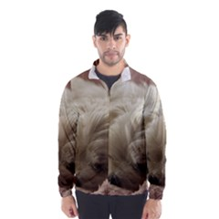 Maltese Sleeping Wind Breaker (Men)