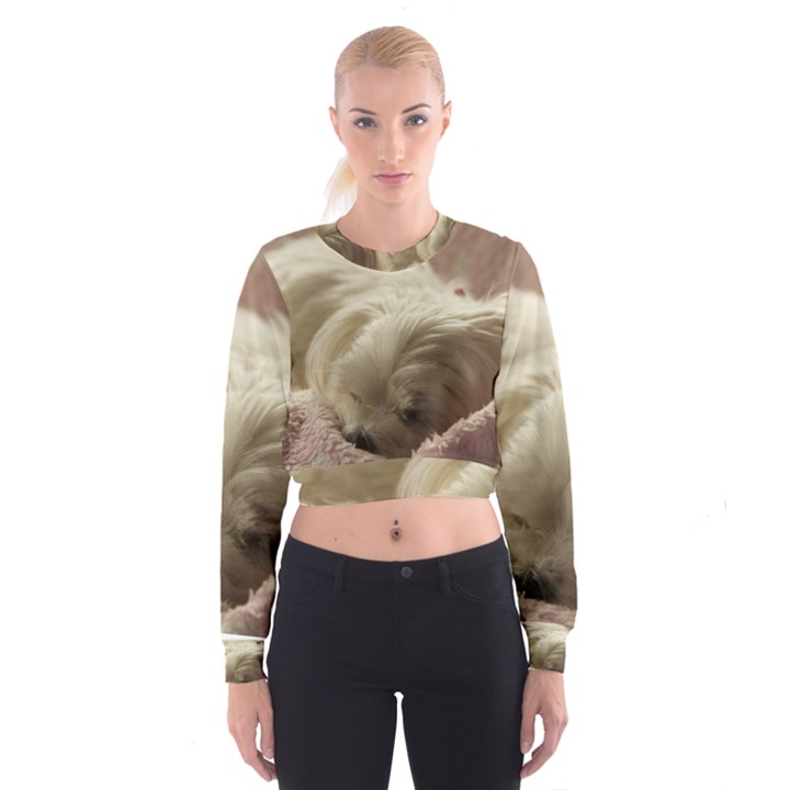 Maltese Sleeping Women s Cropped Sweatshirt