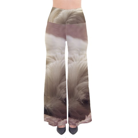 Maltese Sleeping Pants
