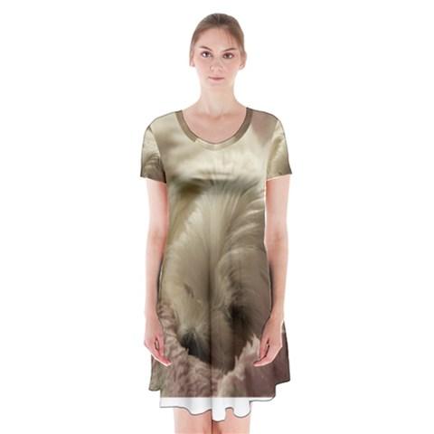 Maltese Sleeping Short Sleeve V-neck Flare Dress