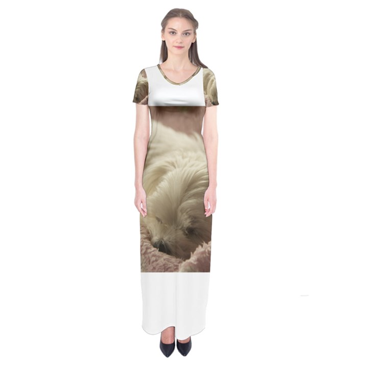 Maltese Sleeping Short Sleeve Maxi Dress