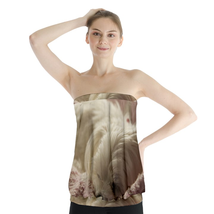 Maltese Sleeping Strapless Top