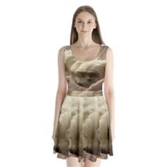 Maltese Sleeping Split Back Mini Dress