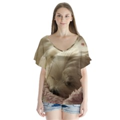 Maltese Sleeping Flutter Sleeve Top