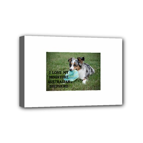 Blue Merle Miniature American Shepherd Love W Pic Mini Canvas 6  x 4