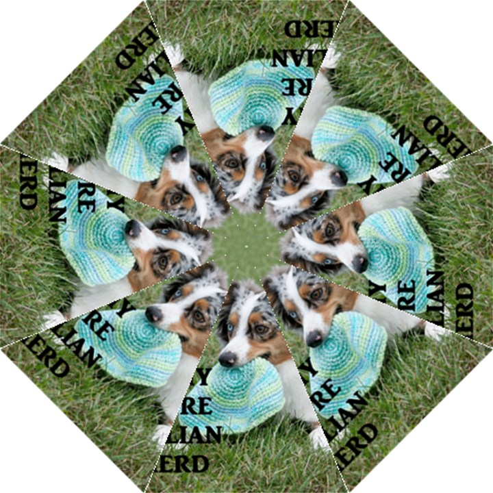 Blue Merle Miniature American Shepherd Love W Pic Folding Umbrellas