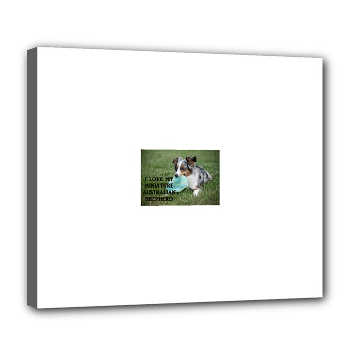 Blue Merle Miniature American Shepherd Love W Pic Deluxe Canvas 24  x 20