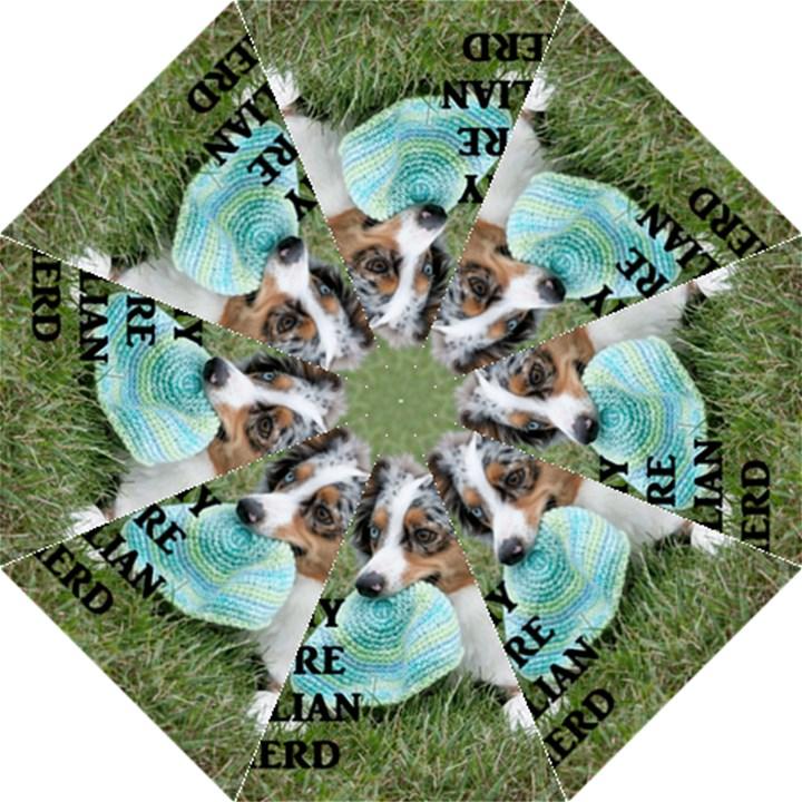 Blue Merle Miniature American Shepherd Love W Pic Hook Handle Umbrellas (Medium)