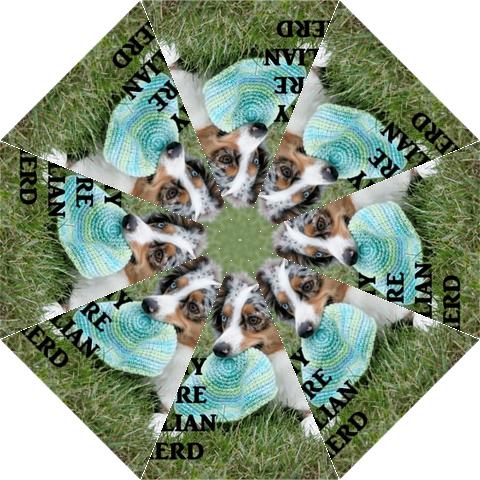 Blue Merle Miniature American Shepherd Love W Pic Hook Handle Umbrellas (Large)
