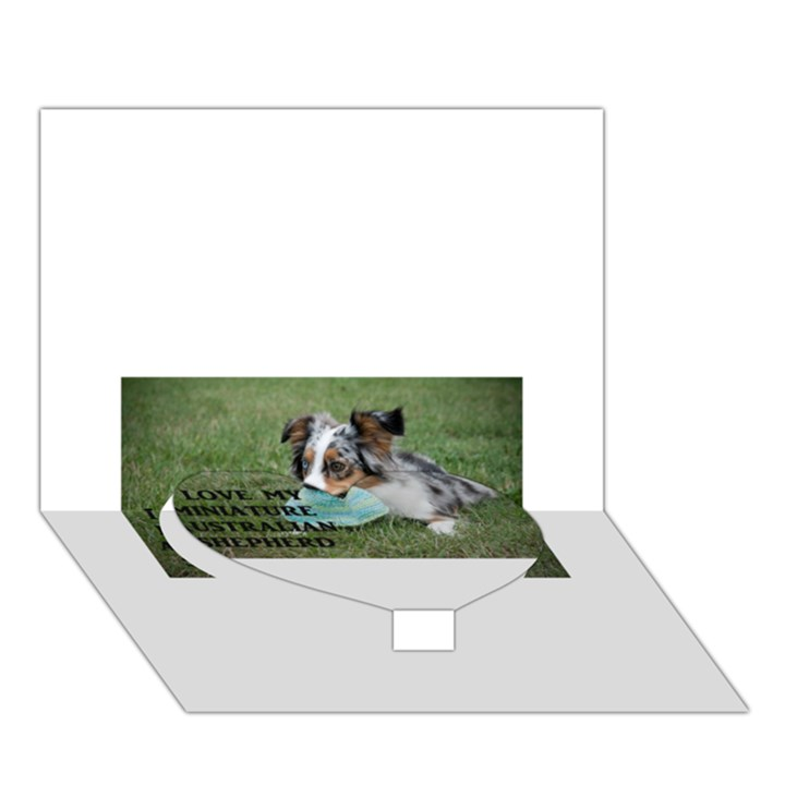 Blue Merle Miniature American Shepherd Love W Pic Heart Bottom 3D Greeting Card (7x5)