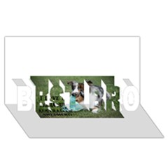 Blue Merle Miniature American Shepherd Love W Pic BEST BRO 3D Greeting Card (8x4)