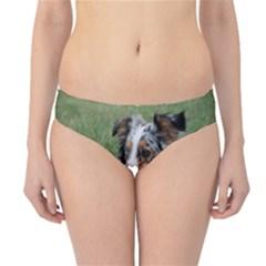 Blue Merle Miniature American Shepherd Love W Pic Hipster Bikini Bottoms