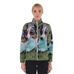 Blue Merle Miniature American Shepherd Love W Pic Winterwear