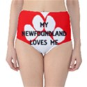 My Newfie Loves Me High-Waist Bikini Bottoms View1