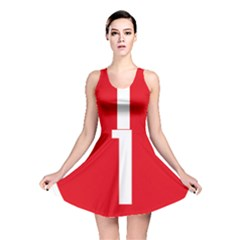New Zealand State Highway 1 Reversible Skater Dress