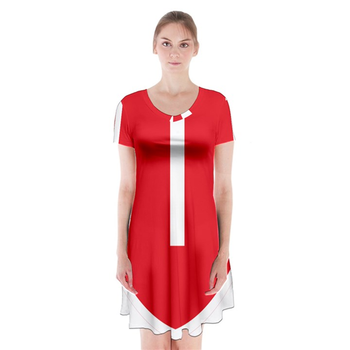 New Zealand State Highway 1 Short Sleeve V-neck Flare Dress