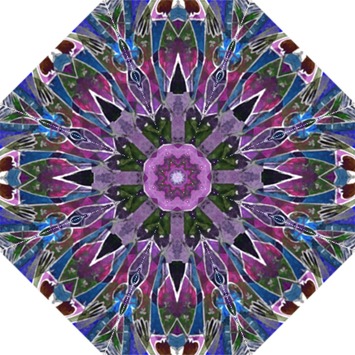 Sly Dog Modern Grunge Style Blue Pink Violet Golf Umbrellas