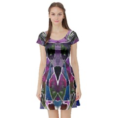 Sly Dog Modern Grunge Style Blue Pink Violet Short Sleeve Skater Dress
