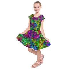 Hot Liquid Abstract A Kids  Short Sleeve Dress