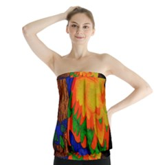 Parakeet Colorful Bird Animal Strapless Top