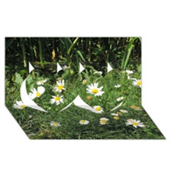 White Daisy Flowers Twin Hearts 3d Greeting Card (8x4)