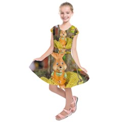 Easter Hare Easter Bunny  Kids  Short Sleeve Dress