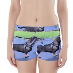 Wirehaired Dachshund Full Boyleg Bikini Wrap Bottoms
