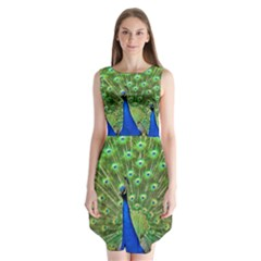 Bird Peacock Sleeveless Chiffon Dress