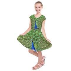 Bird Peacock Kids  Short Sleeve Dress