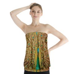 Bird Peacock Feathers Strapless Top