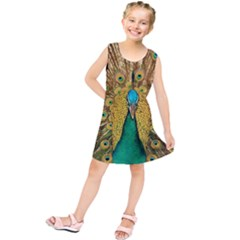 Bird Peacock Feathers Kids  Tunic Dress