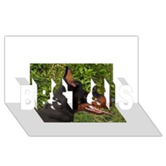 Doberman Pinscher BEST SIS 3D Greeting Card (8x4)