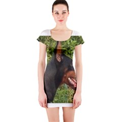 Doberman Pinscher Short Sleeve Bodycon Dress