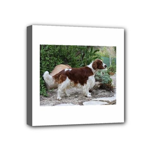Welsh Springer Spaniel Full Mini Canvas 4  x 4