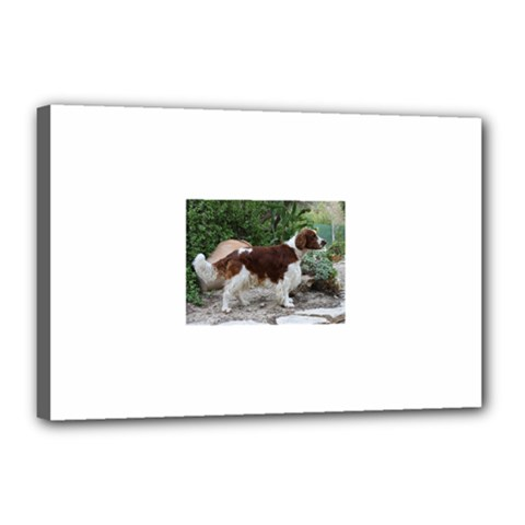 Welsh Springer Spaniel Full Canvas 18  x 12