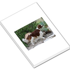 Welsh Springer Spaniel Full Large Memo Pads