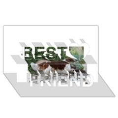 Welsh Springer Spaniel Full Best Friends 3D Greeting Card (8x4)