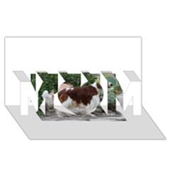 Welsh Springer Spaniel Full MOM 3D Greeting Card (8x4)