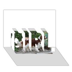 Welsh Springer Spaniel Full GIRL 3D Greeting Card (7x5)