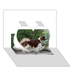 Welsh Springer Spaniel Full Heart 3D Greeting Card (7x5)