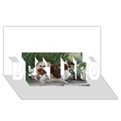 Welsh Springer Spaniel Full BEST BRO 3D Greeting Card (8x4)