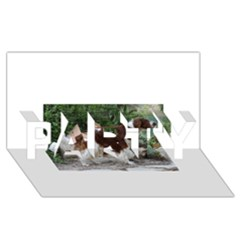 Welsh Springer Spaniel Full PARTY 3D Greeting Card (8x4)