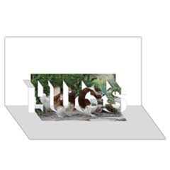 Welsh Springer Spaniel Full HUGS 3D Greeting Card (8x4)
