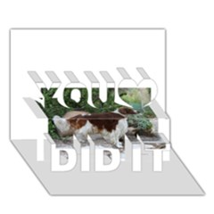 Welsh Springer Spaniel Full You Did It 3D Greeting Card (7x5)