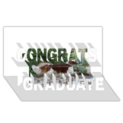 Welsh Springer Spaniel Full Congrats Graduate 3D Greeting Card (8x4)