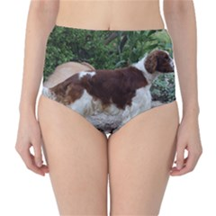 Welsh Springer Spaniel Full High-Waist Bikini Bottoms