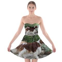 Welsh Springer Spaniel Full Strapless Bra Top Dress