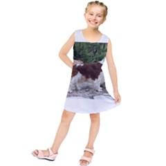 Welsh Springer Spaniel Full Kids  Tunic Dress